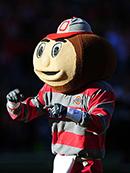 brutus-the-buckeye-ohio