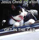 jesus-christ-its-a-lion